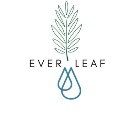 Ever Leaf – P71